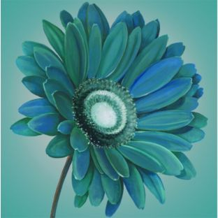Buy Graham & Brown Teal Gerbera Wall Art at Argos.co.uk - Your Online Shop for Pictures and wall art.