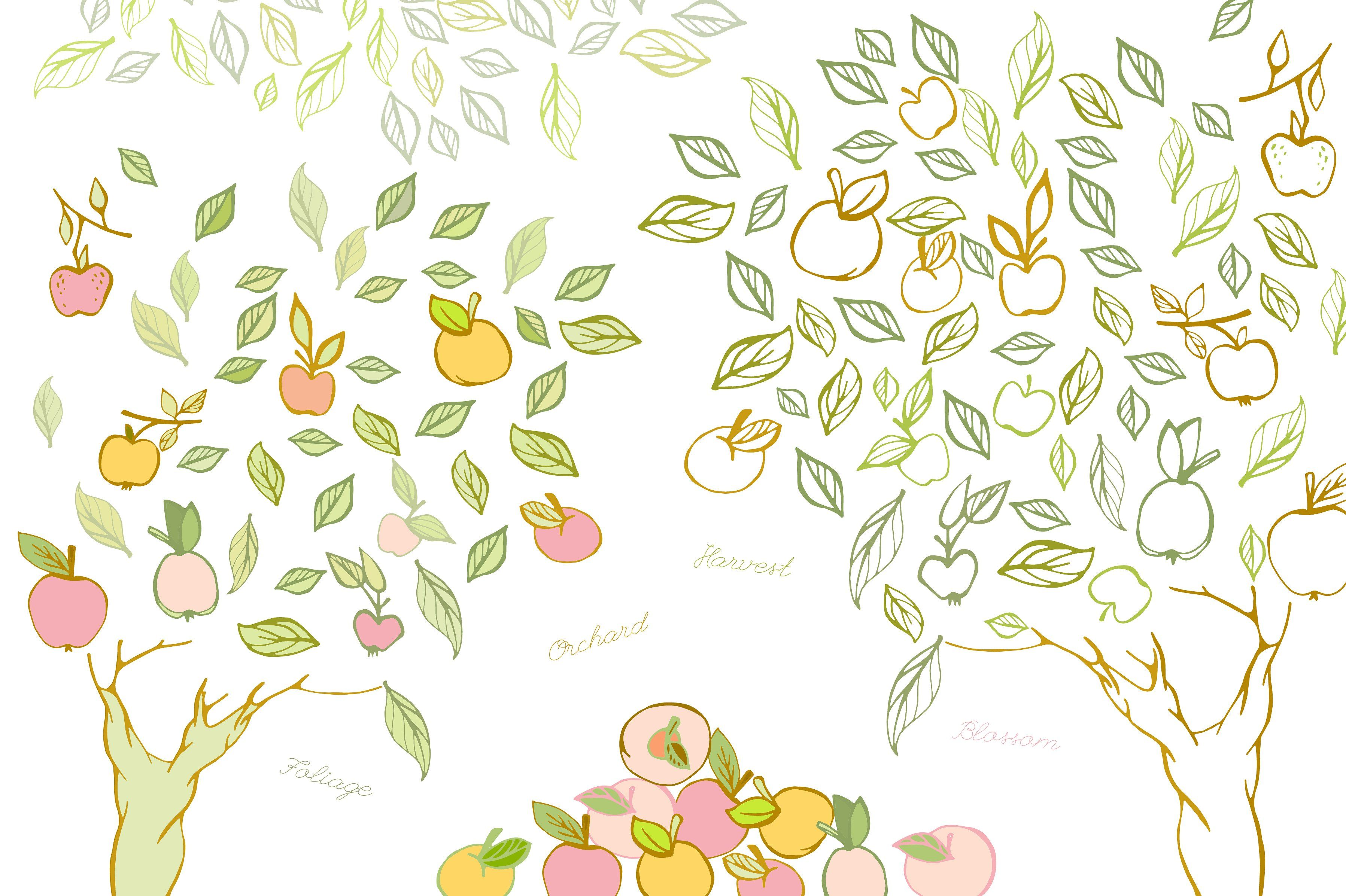 Apple Orchard Vector Collection Logo Fruit Templates Converted