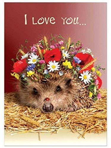 Hedgehog Love Tree Free Greeting Cards Tree Free http://www.amazon.co.uk/dp/B017DHXZKY/ref=cm_sw_r_pi_dp_jXgKwb0S286E7