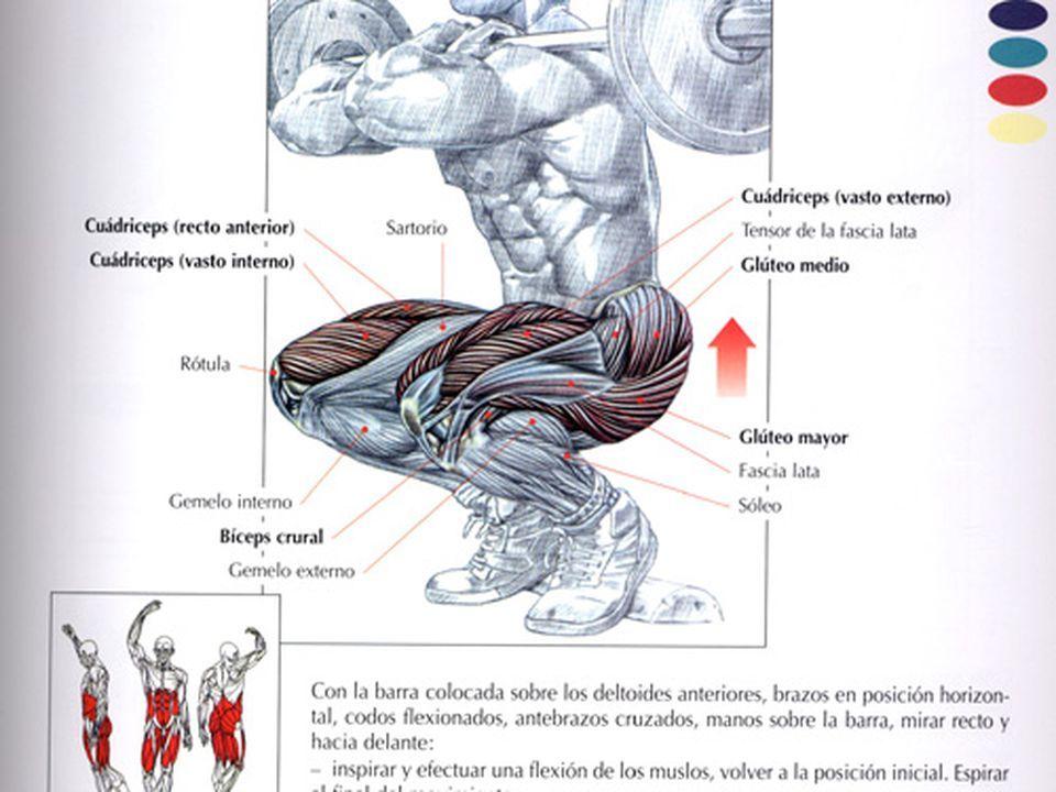 Pin On Cuerpo Sano Gym Poder Full
