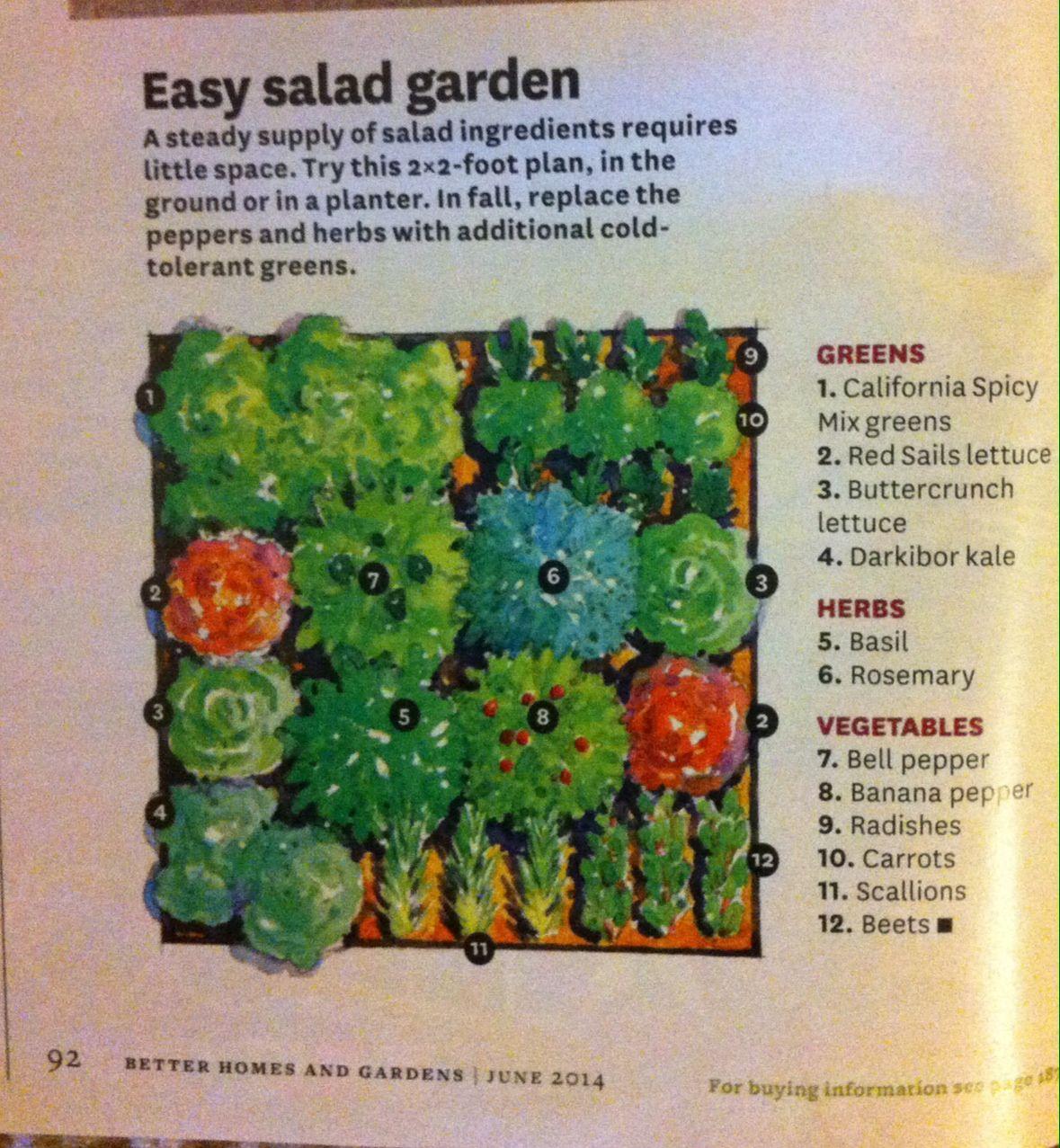 Bhg 2x2 Container Salad Garden Plan Buttercrunch Lettuce Easy Garden Mixed Greens