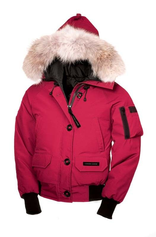 canada goose Jackets ROSE