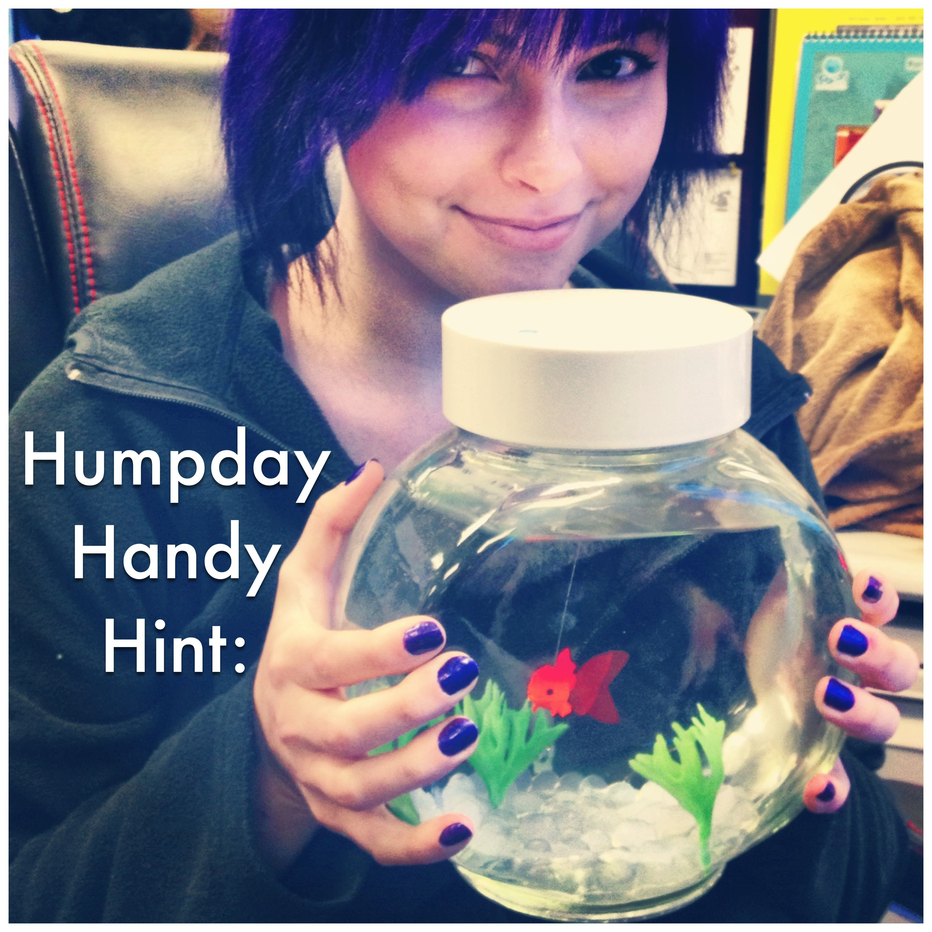 cool handy office supplies. Cool Handy Office Supplies. Humpday Hint: Pets: Artificial Fish Require Little Supplies I