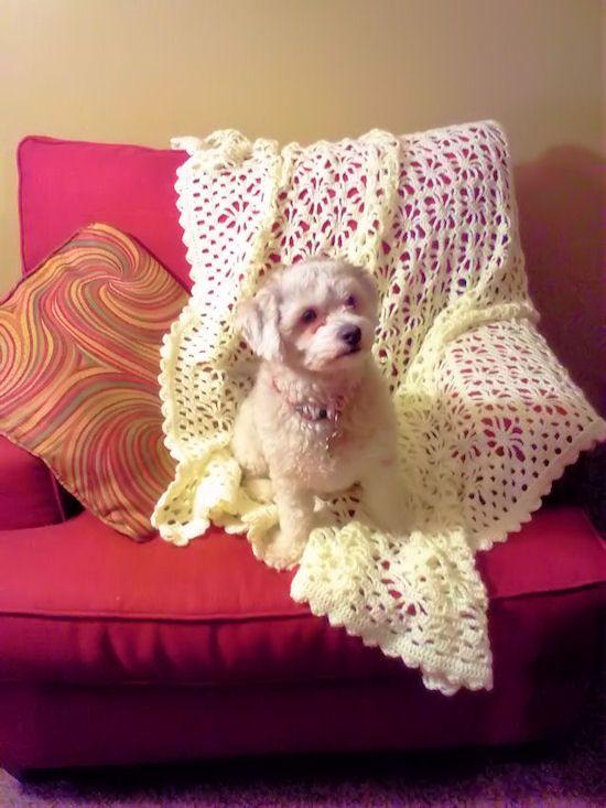 Tangleweb Afghan or Wrap-free crochet pattern. No sé con qué ...