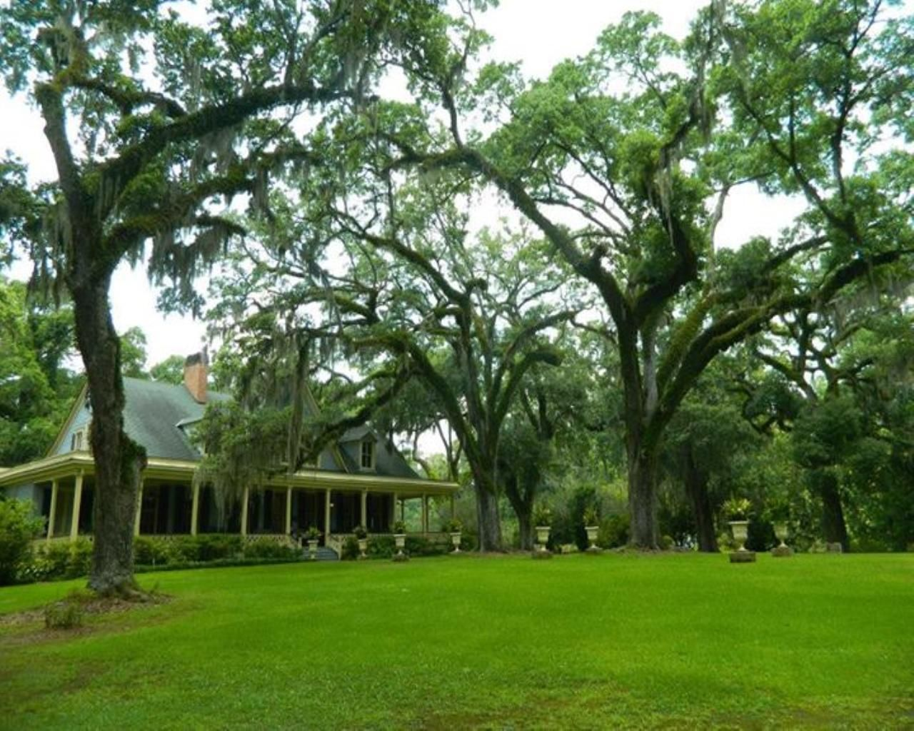 Pin on Louisiana Plantation Homes