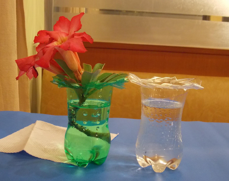 Vas Bunga Dari Botol Bekas Bunga Beri