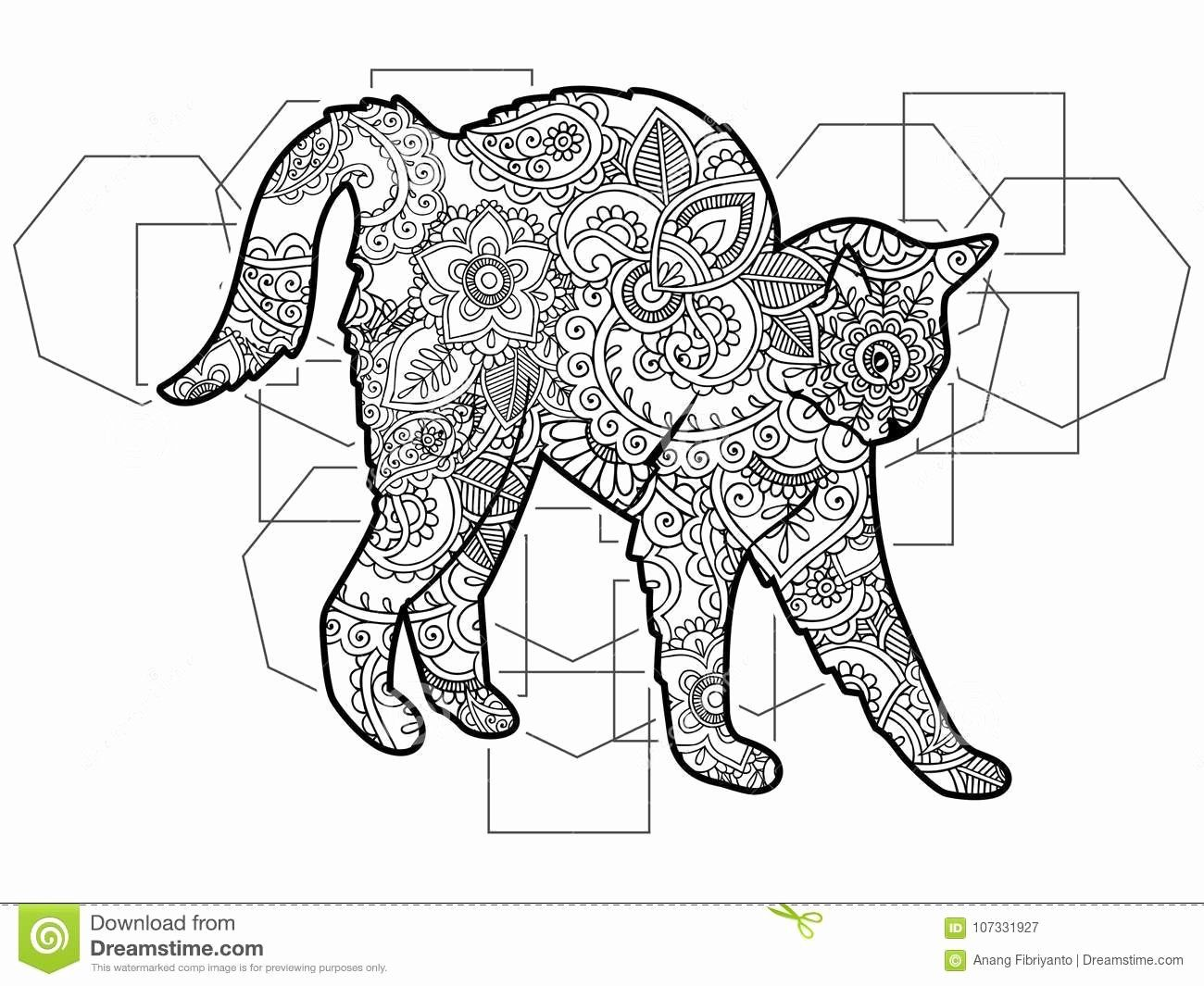 Pin On Animal Coloring Pages [ 1065 x 1300 Pixel ]
