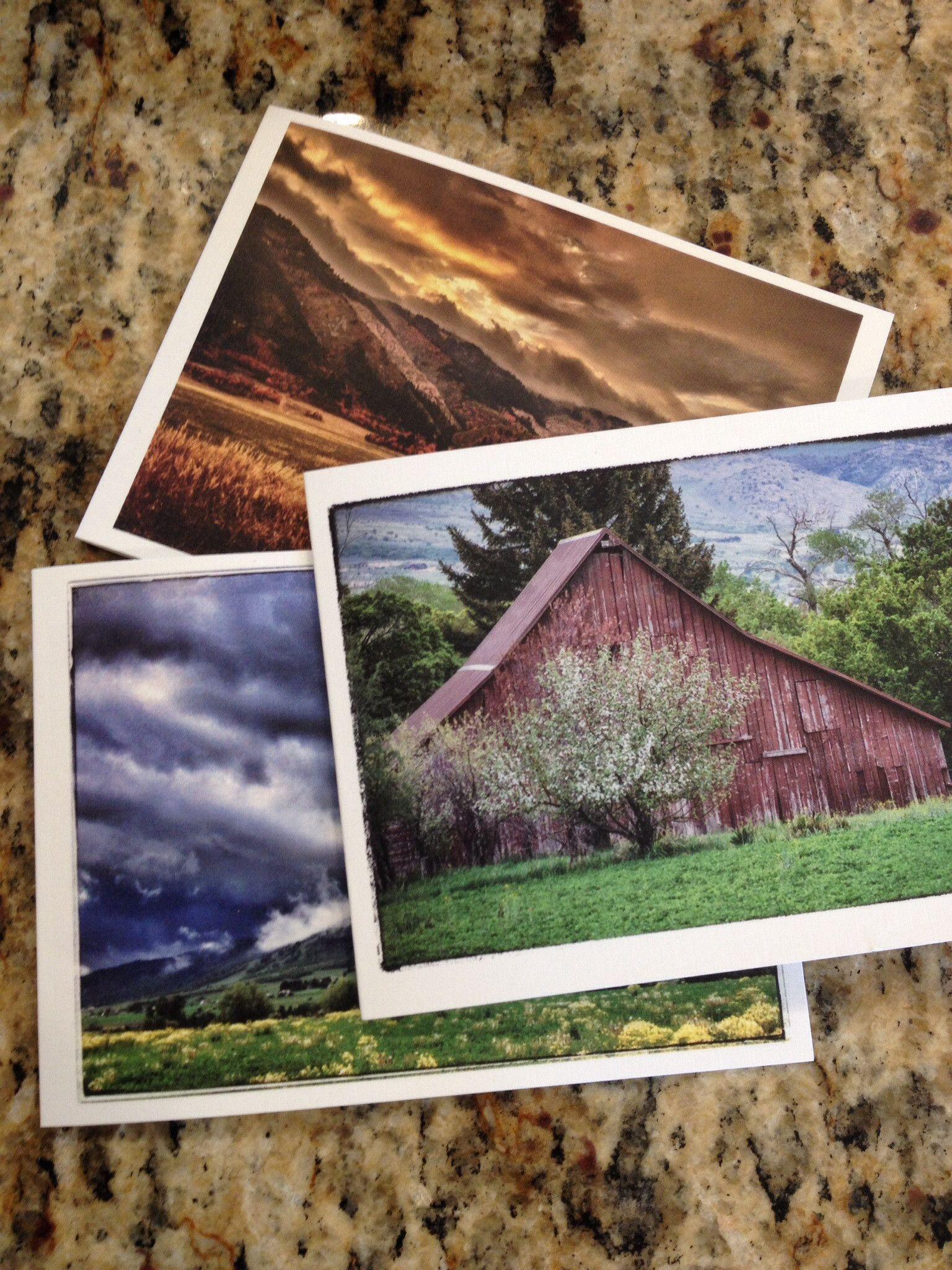 Anita Terry Photography Cards
