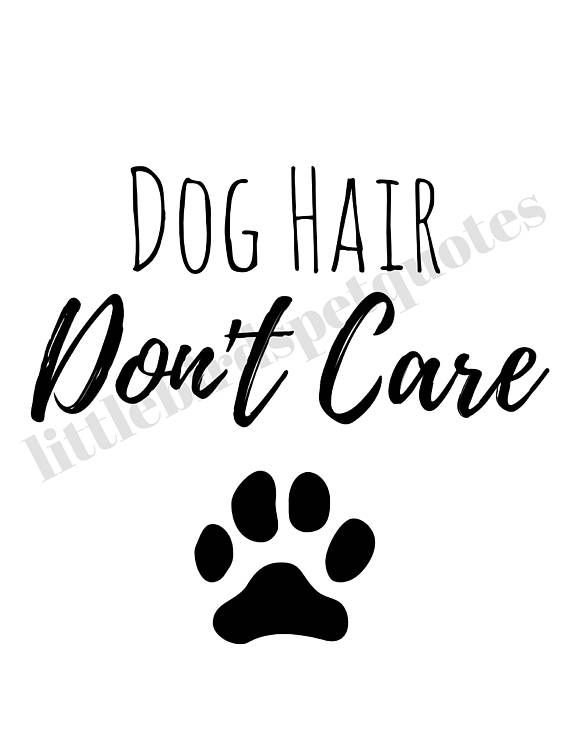 Dog Hair Dont Care Dog Quote Printable Dog Lover T Printable