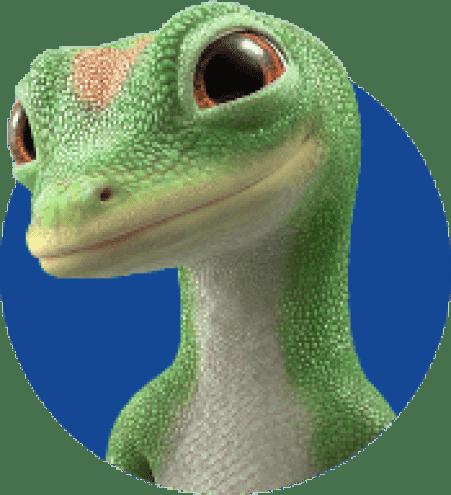 Geico Gecko Kit Cars Car Cleaning Gecko