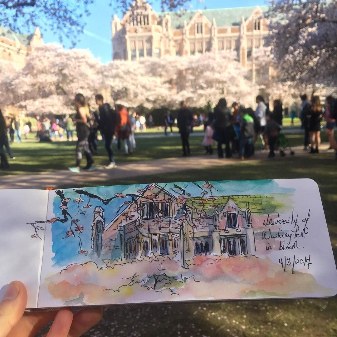The Quad University Of Washington By Seltaire Instagram Instagram Kyoto Japan Instagram Posts