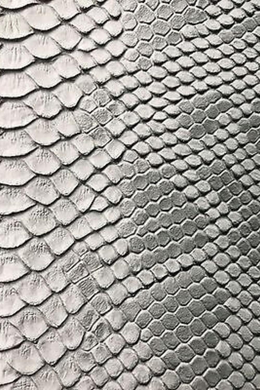 Inspired By Textures Snake Skin Viper Snake Snake Scales