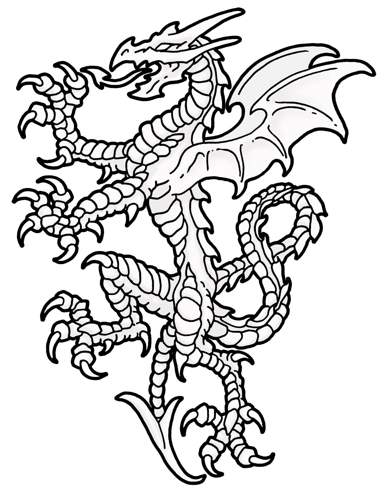 Dragon Heraldry 17