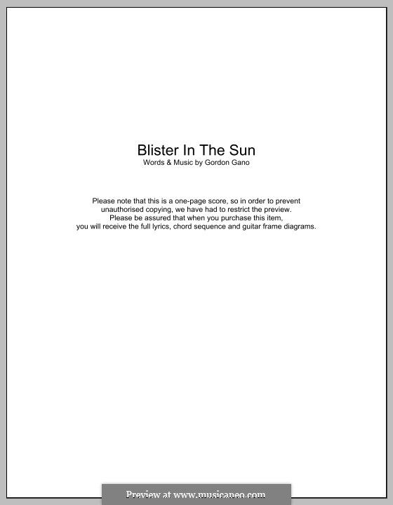 Violent Femmes Blister In The Sun Lyrics And Chords Music I