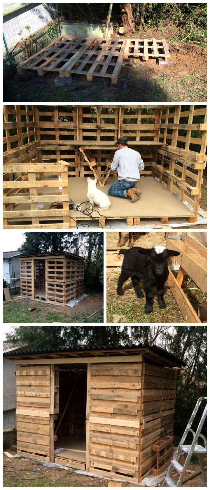 How To Build A Pallet Shed With Images Pallet Shed Pallet Diy Pallet Building