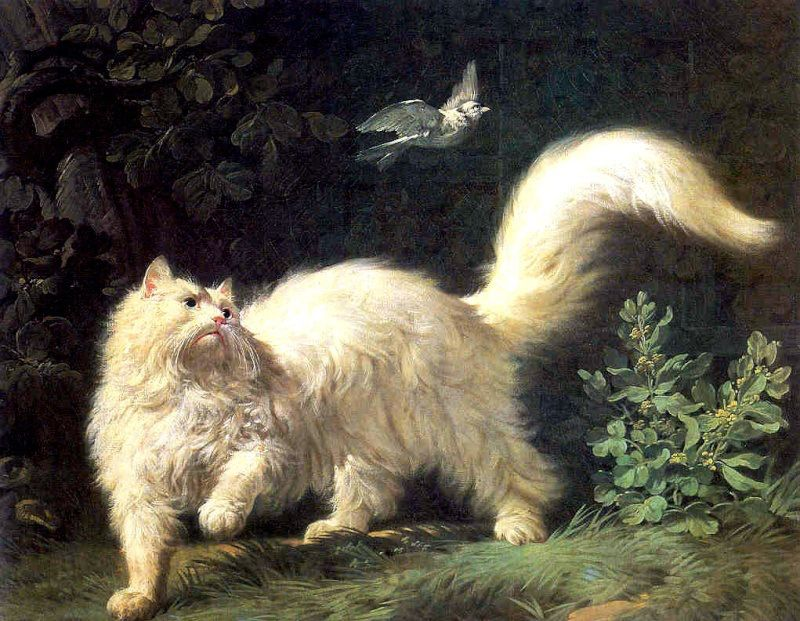 The Character of Cats Depictions in and Regency