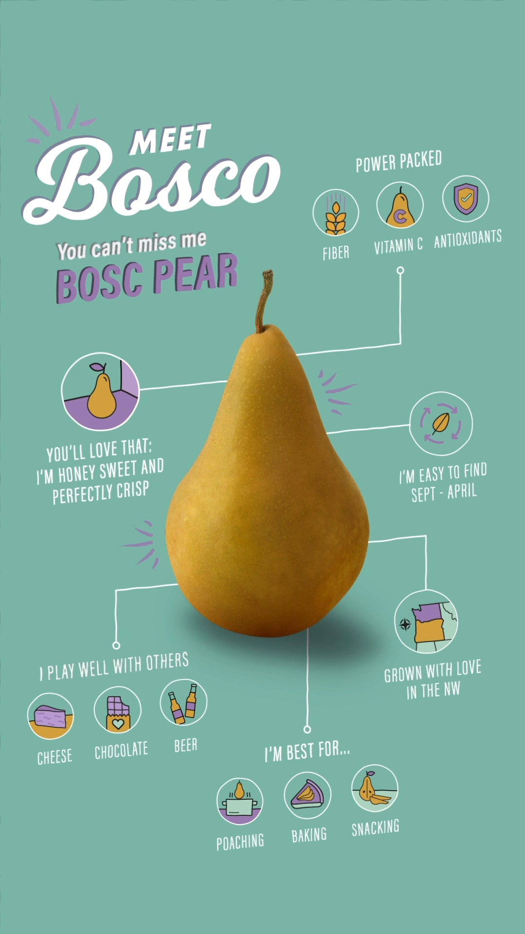 Tall, dark, and handsome Bosc Pear.