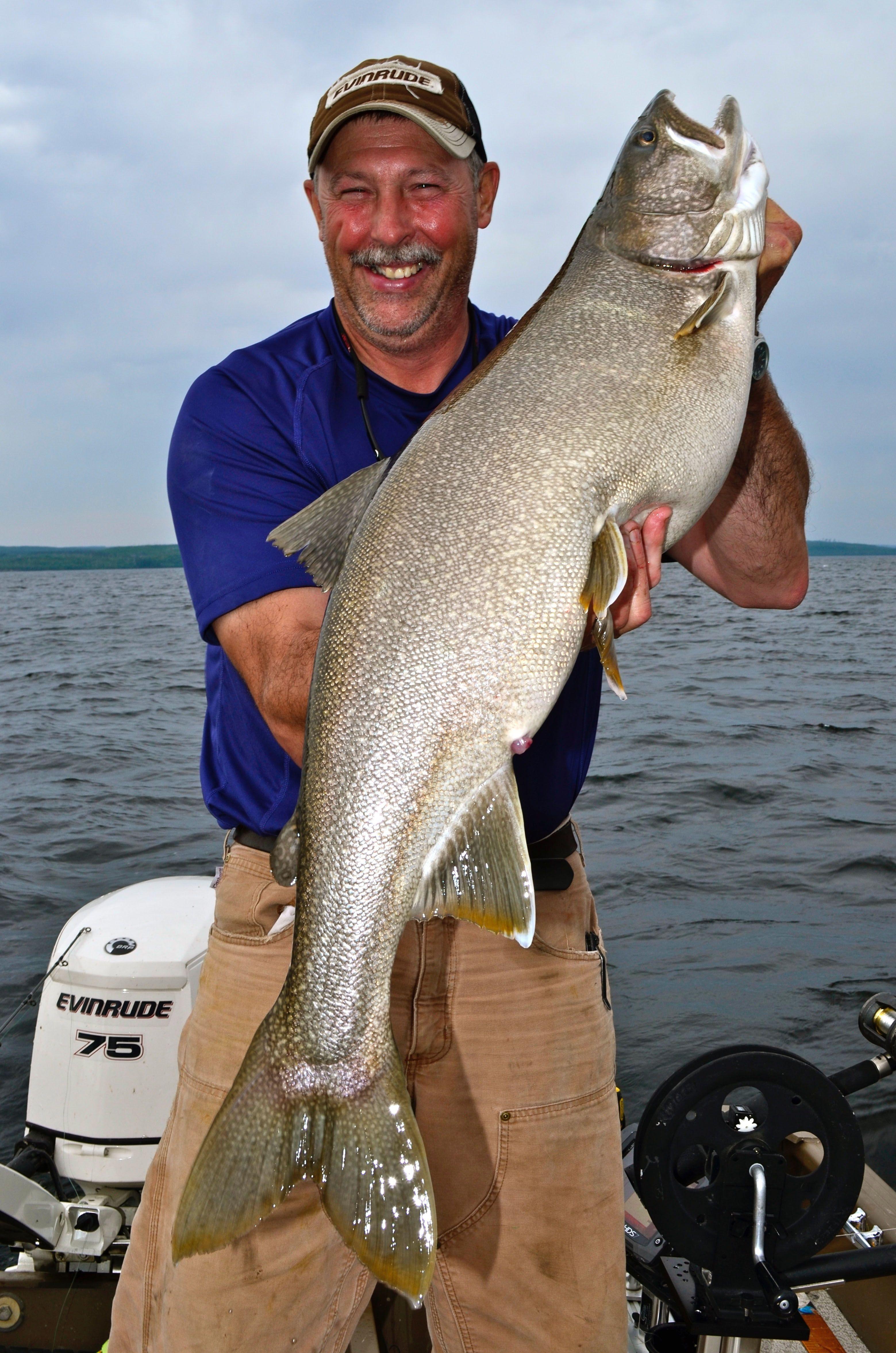 lake trout mark romanack fishing 411 | Lake Trout Fishing | Fish