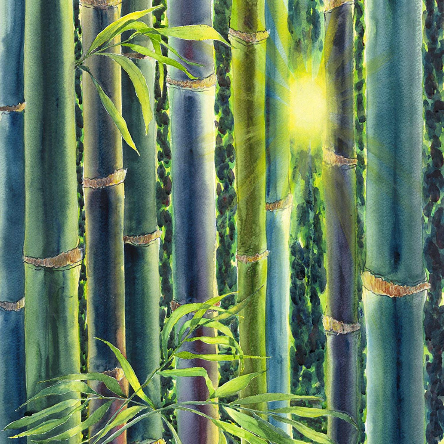 Image Result For Tropical Forest Print Fabric Panels Mirror