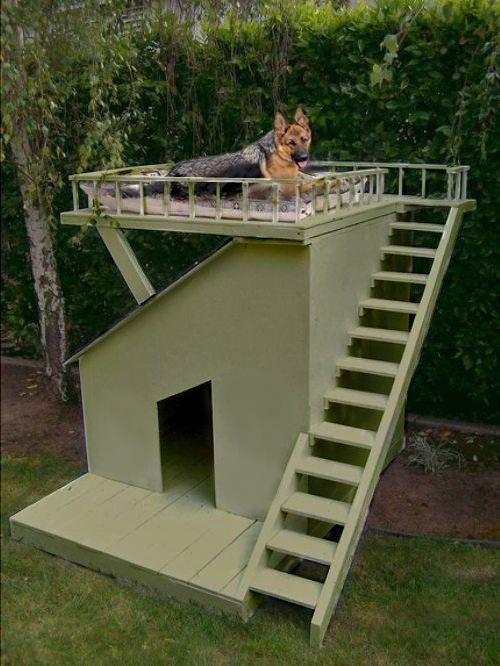Sweet With Images Dog House Diy Dog Houses Cool Dog Houses