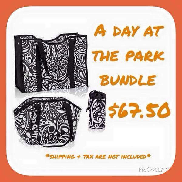 July only !  Thirty One's ALL DAY TOTE - great for overnight trips, LUNCH BREAK THERMAL - for snacks, drinks,or mess , sunscreen, etc for the beach/pool, BRING A BOTTLE THERMAL to keep your drink cold , or to carry your insulin in.  mythirtyone.com/carlacannoy