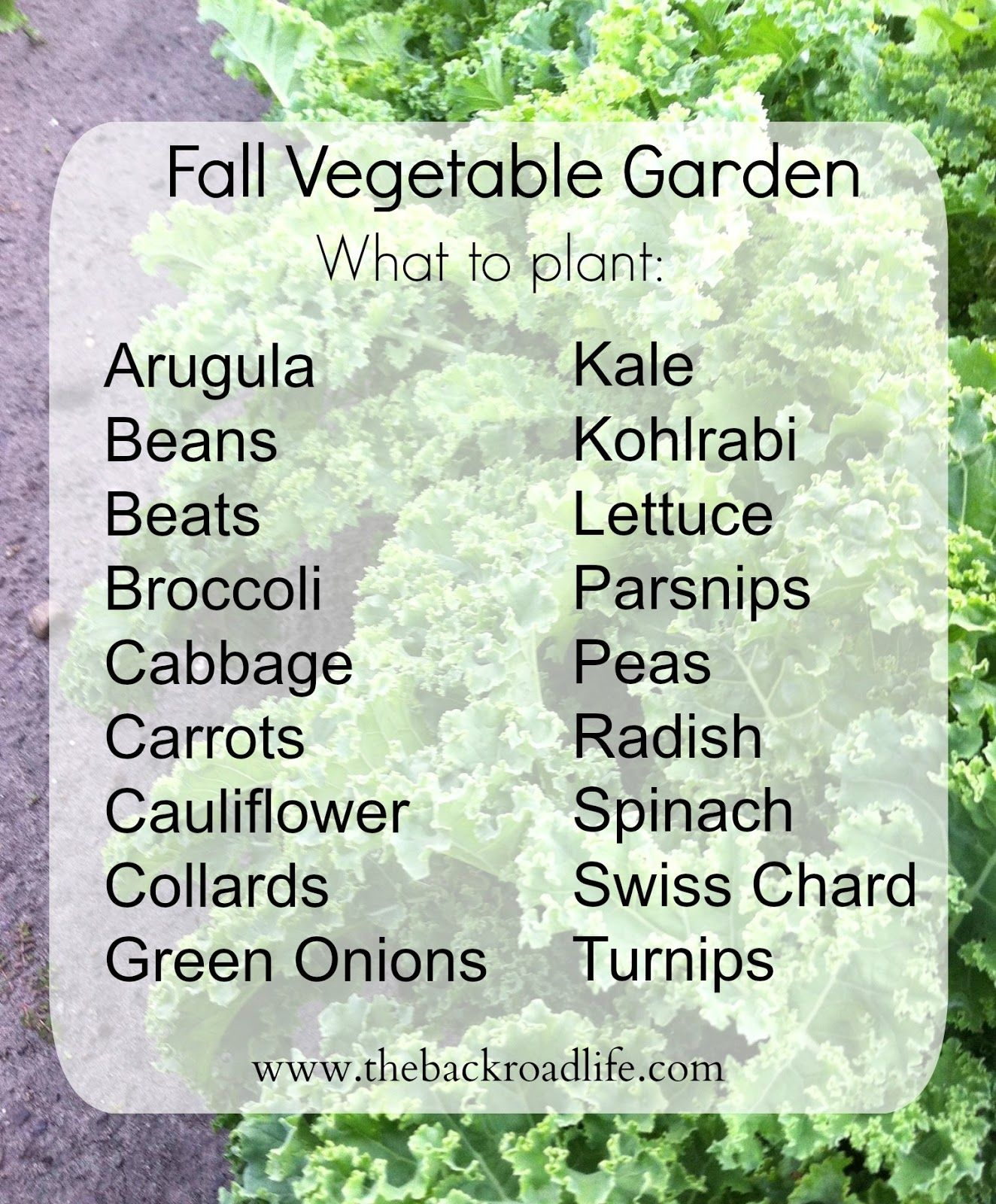 The Backroad Life Fall Vegetable Garden When To And