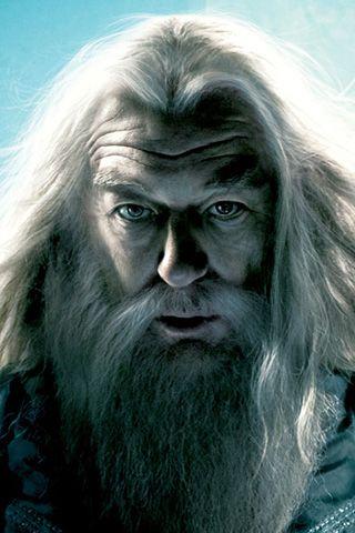 Albus Dumbledore Portrait Harry Potter Portraits Harry Potter Characters Harry Potter Cast