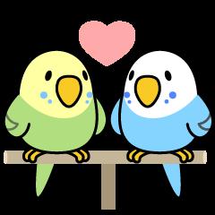 Budgerigar Sekiseinko Kko Line Creators Stickers Parrots Art Parakeet Art Funny Birds