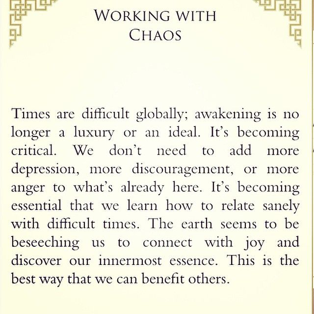 From The Bookapp When Things Fall Apart By Pema Chodron The Go