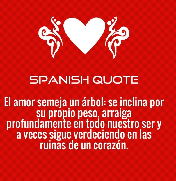 Love Quotes Spanish  Daily Photo Quotes  Valentine Love -7260