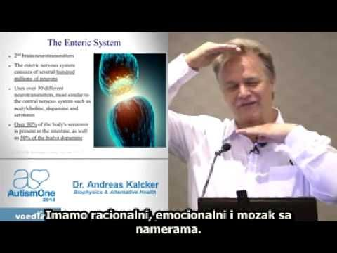 Andreas kalcker paraziták. Lyme-kór - Borrelia és társfertőzések, Lyme-MSIDS, gyógymódok, diéta