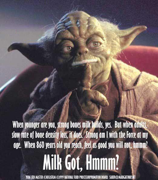 Yoda Got Milk Star Wars Humor Yoda Quotes Yoda Funny