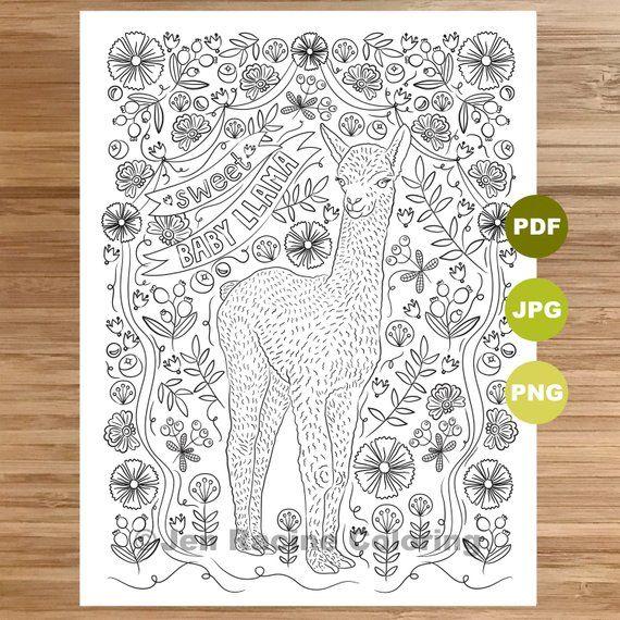 Sweet Baby Llama Coloring Page Llama Art Coloring Book Printable