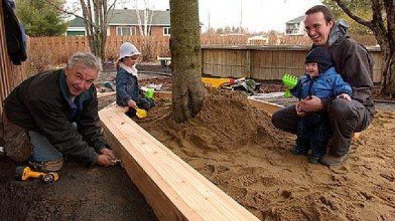 Carré de sable avec un arbre