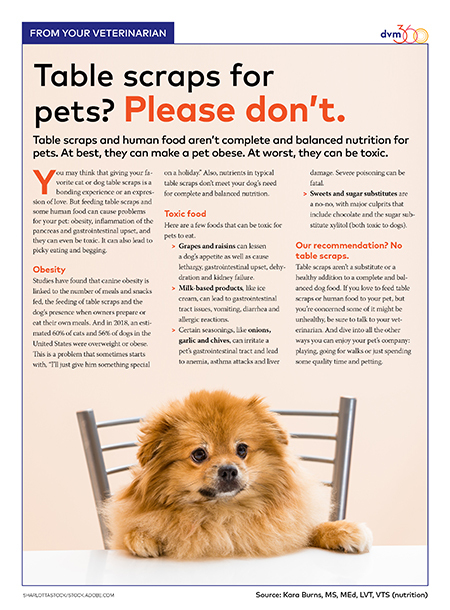 Veterinary Client Handout No To Feeding Pets Table Scraps Dvm360 Pet Clinic Animal Nutrition Pet Health