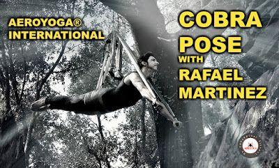 yoga aerien aeroyoga fly flying cobra pose posture