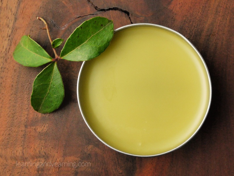 Home Remedies Archives In 2021 Wintergreen Oil Salve Recipes Remedies