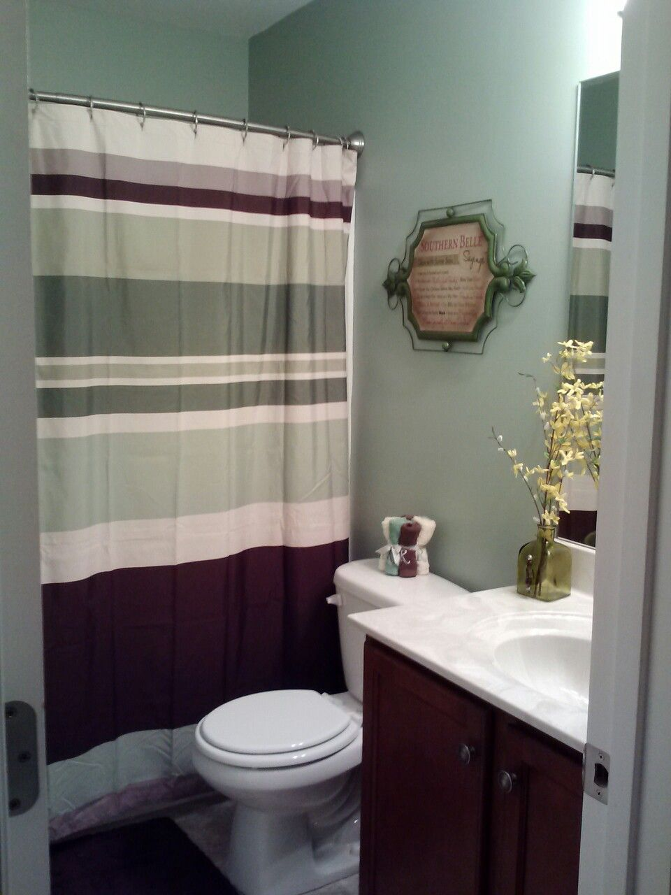 Purple and brown bathroom ideas - Upstairs Bathrooms