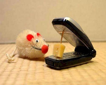 Αποτέλεσμα εικόνας για funny phones