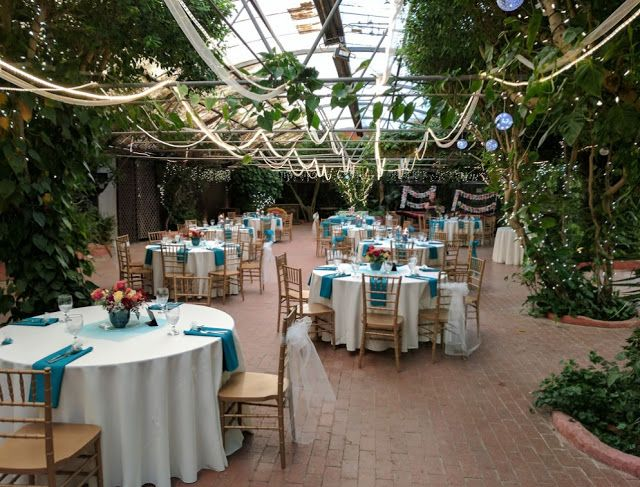 Cheap Wedding Venues In Az Boojum Tree Hidden Garden Whispering Ranch