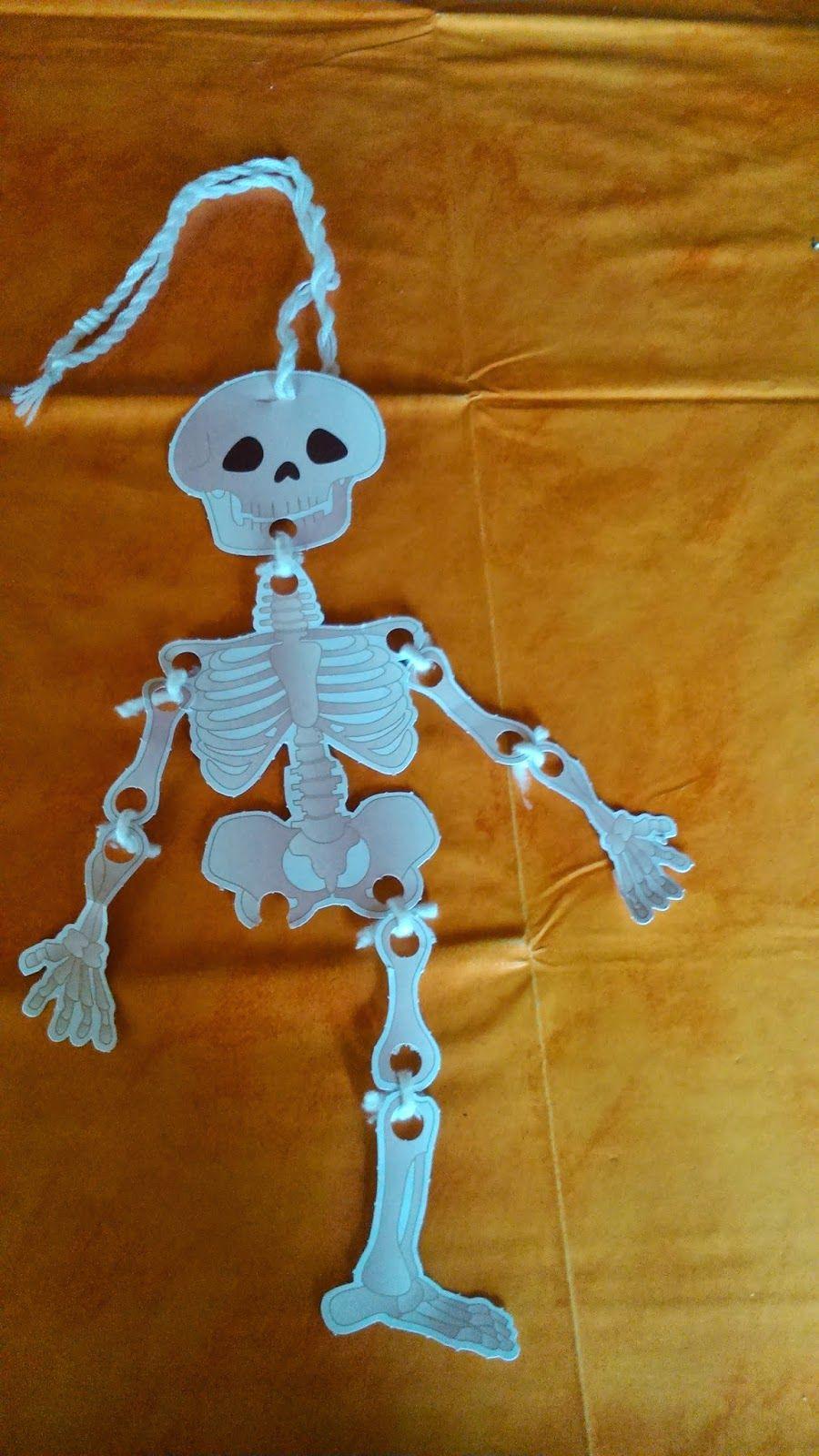 Aprender los huesos del cuerpo humano … | Pinteres…