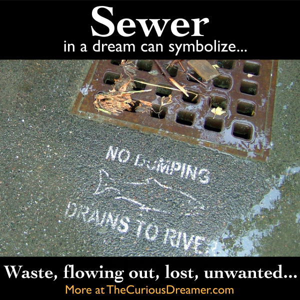 a sewer in a dream can mean more details at thecuriousdreamer com