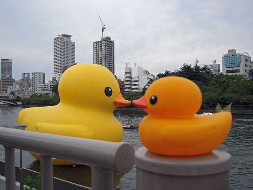 The Giant Rubber Duck Meets His Little Friend Flickr Photo Sharing Rubber Duck Duck Rubber Ducky