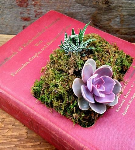 Upcycled Hardcover Book Planter, No. 10