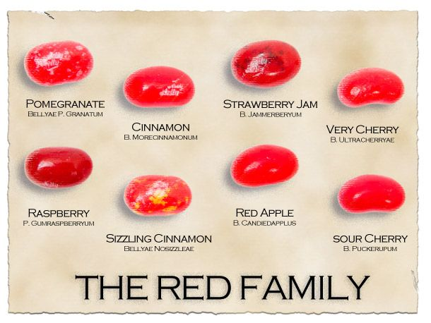 Jelly Belly Identification guide! My favorite = Buttered ...