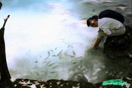 A los peces de las pozas de Erawan Falls les encanta dar mordisquitos en los pies de los bañistas