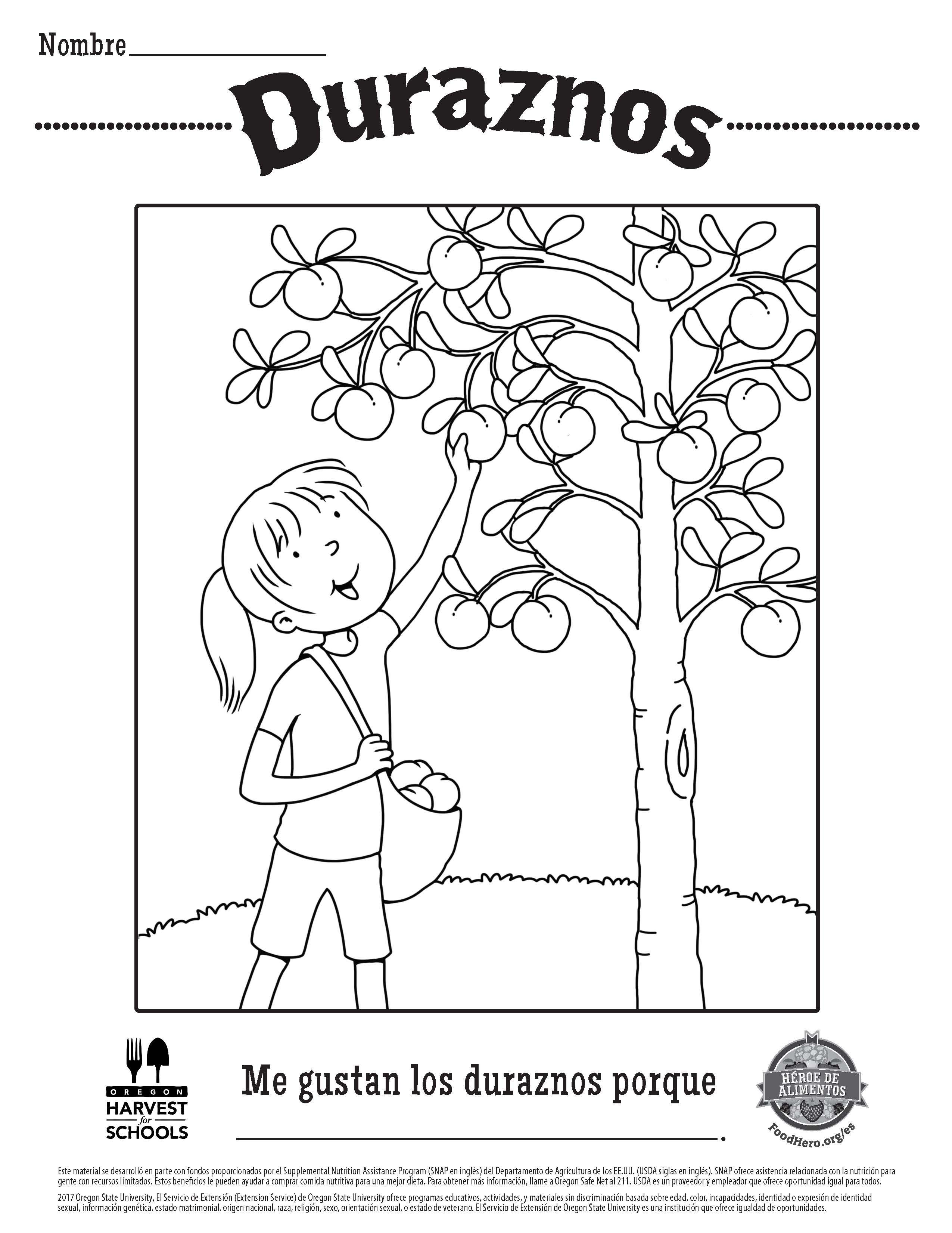Childrens Coloring Sheet Peaches Printable Free Food Hero in