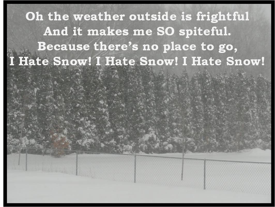 I Hate Snow Disappointment Haters Funny Funny Thoughts Funny