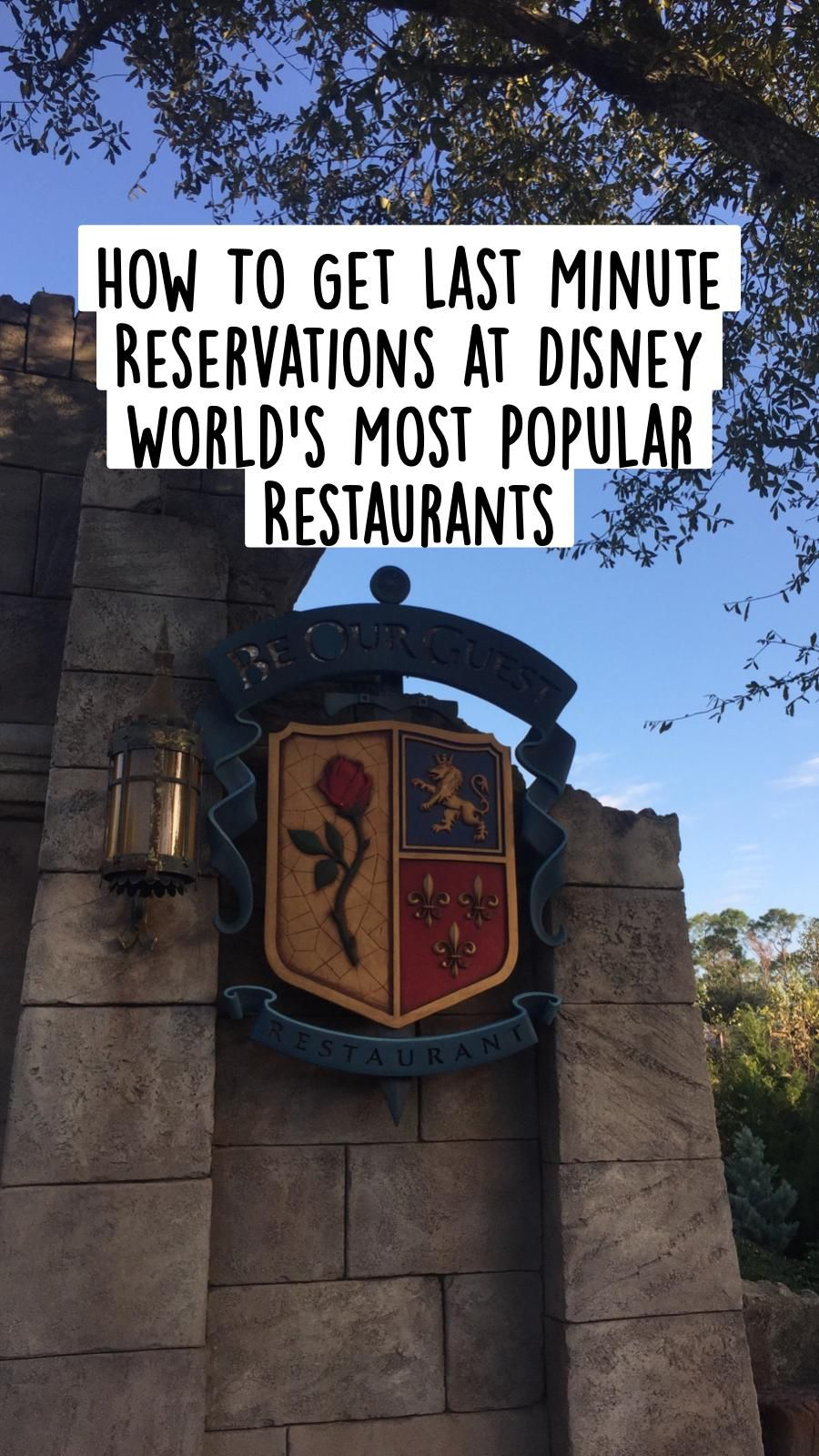 500+ How To Get Last Minute Reservations at Disney World's Most Popular Restaurants