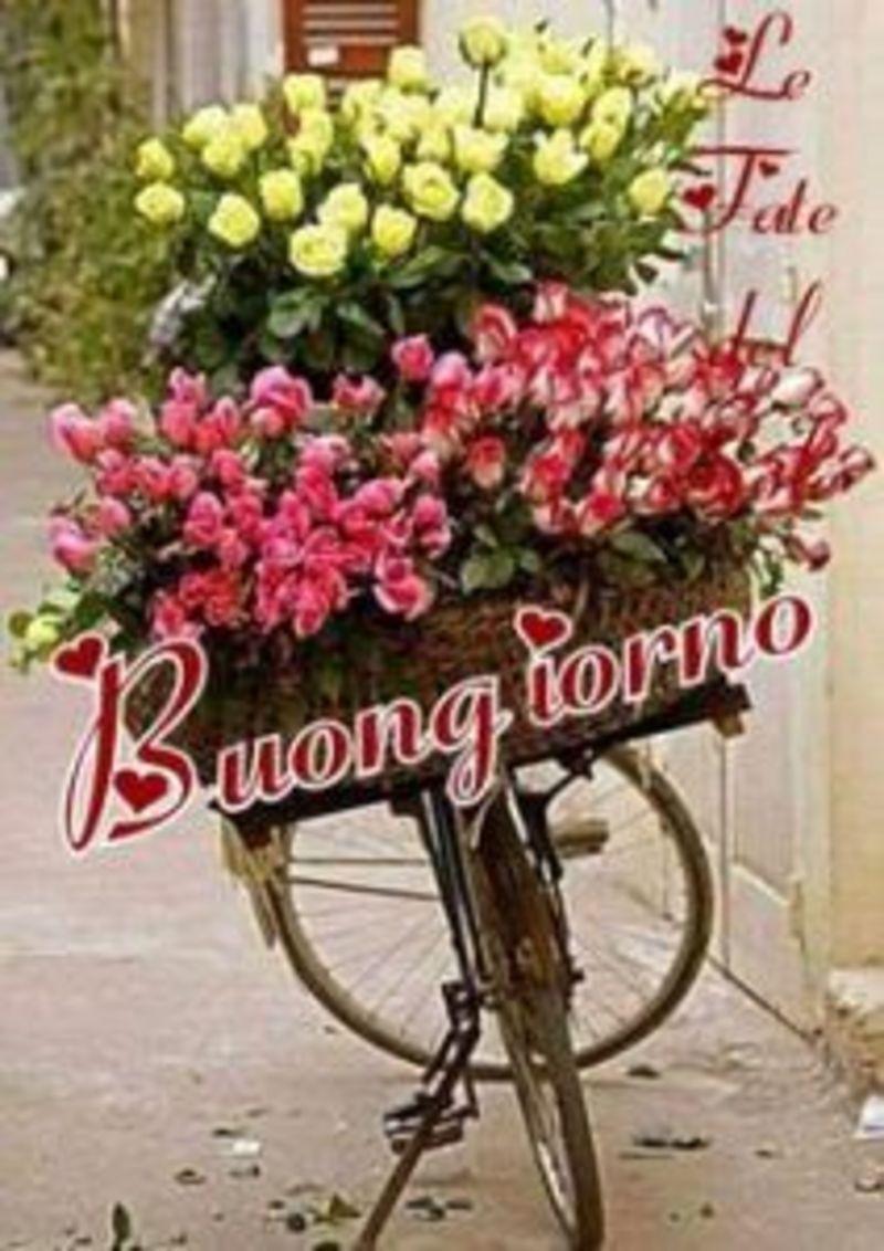 scarica ora immagini buongiorno quoting bonjour italie